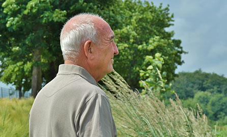 Older man looking out onto farm land